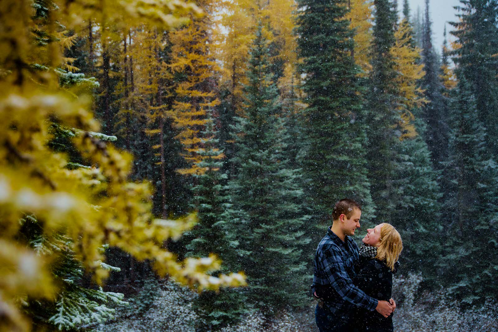 Couple embraces as new snow falls over larch in the Rossland mountain range in engagement photo by Nelson BC photographer Bobbi Barbarich